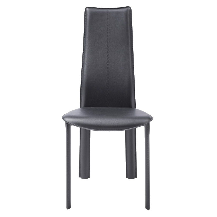 Allisone Black Contemporary Dining Chair