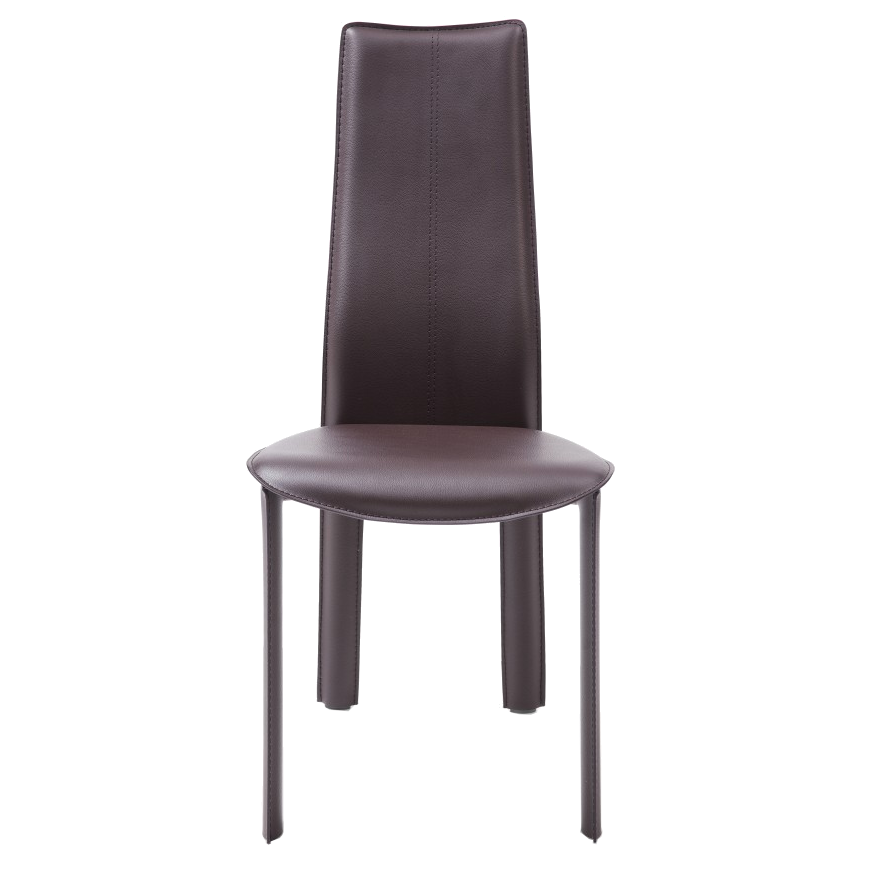 Allisone Brown Contemporary Dining Chair