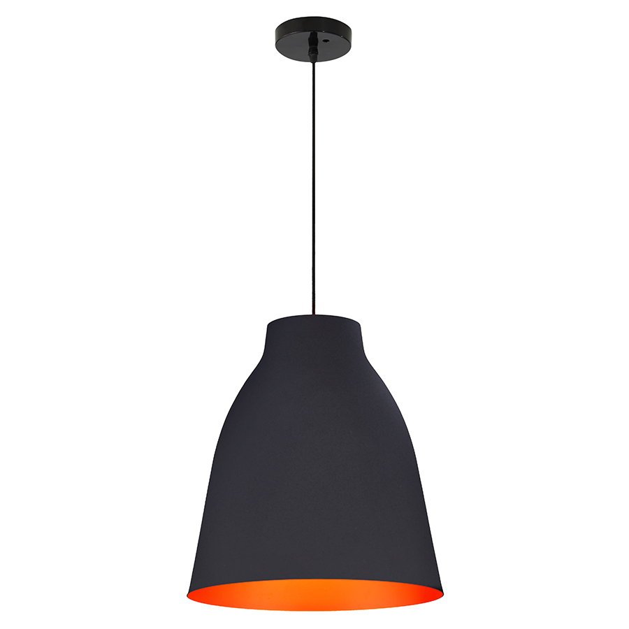 Benderic Contemporary Ceiling Lamp