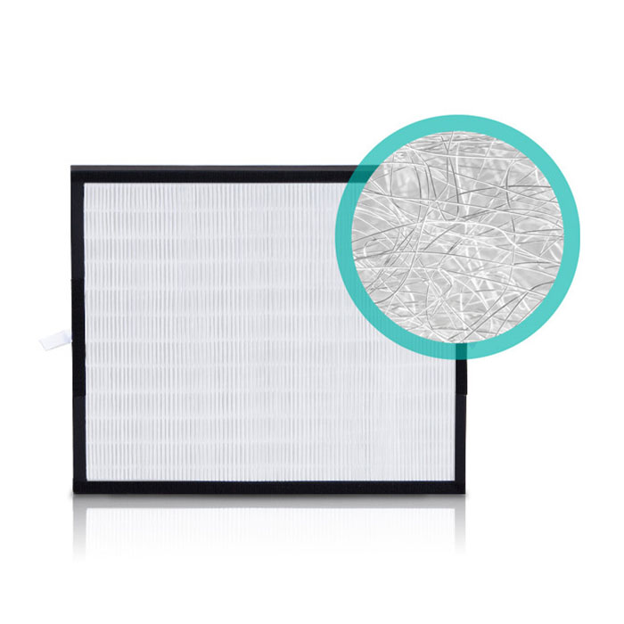 BreatheSmart Fit50 Silver HEPA Air Filter