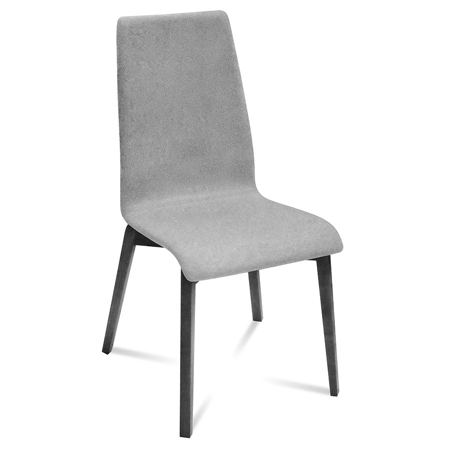 Jake Anthracite + Gray Modern Dining Chair