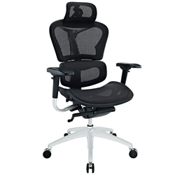 Leeds Modern Executive Office Chair
