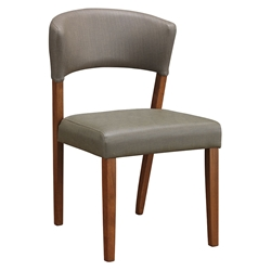 Petyon Modern Dining Chair in Gray