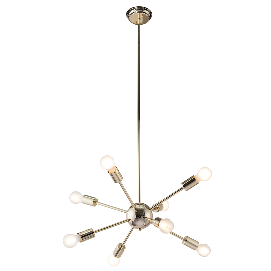 Praveen Contemporary Ceiling Lamp