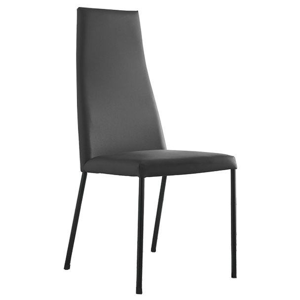 Silva Gray Modern Dining Chair