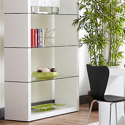 Modern Shelving and Bookcases