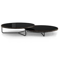 Modloft Adelphi Modern Nesting Coffee Tables in Black Glass
