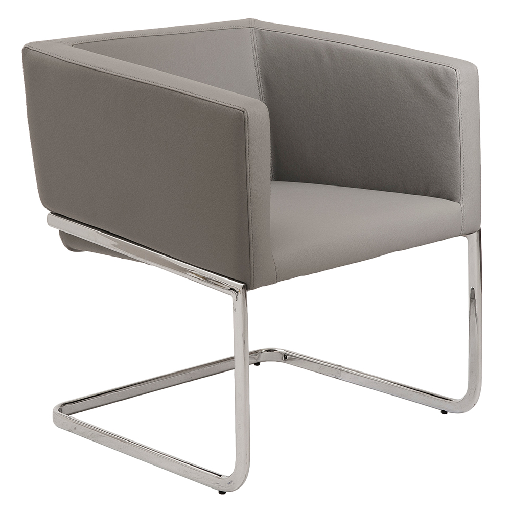 Ari Gray Modern Lounge Chair By Euro Style Eurway