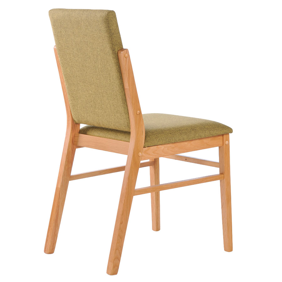 Brunswick Modern Green Dining Chair - Back View