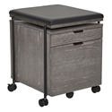 Carins Modern Gray Mobile File Cabinet