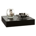 Cary Modern 10 Inch Black Wall Shelf