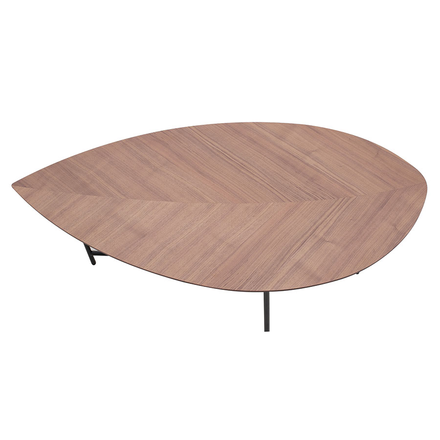 Beau ... Elliston Modern Coffee Table   Top View
