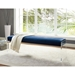 Elphin Blue + Clear Acrylic Contemporary Bench