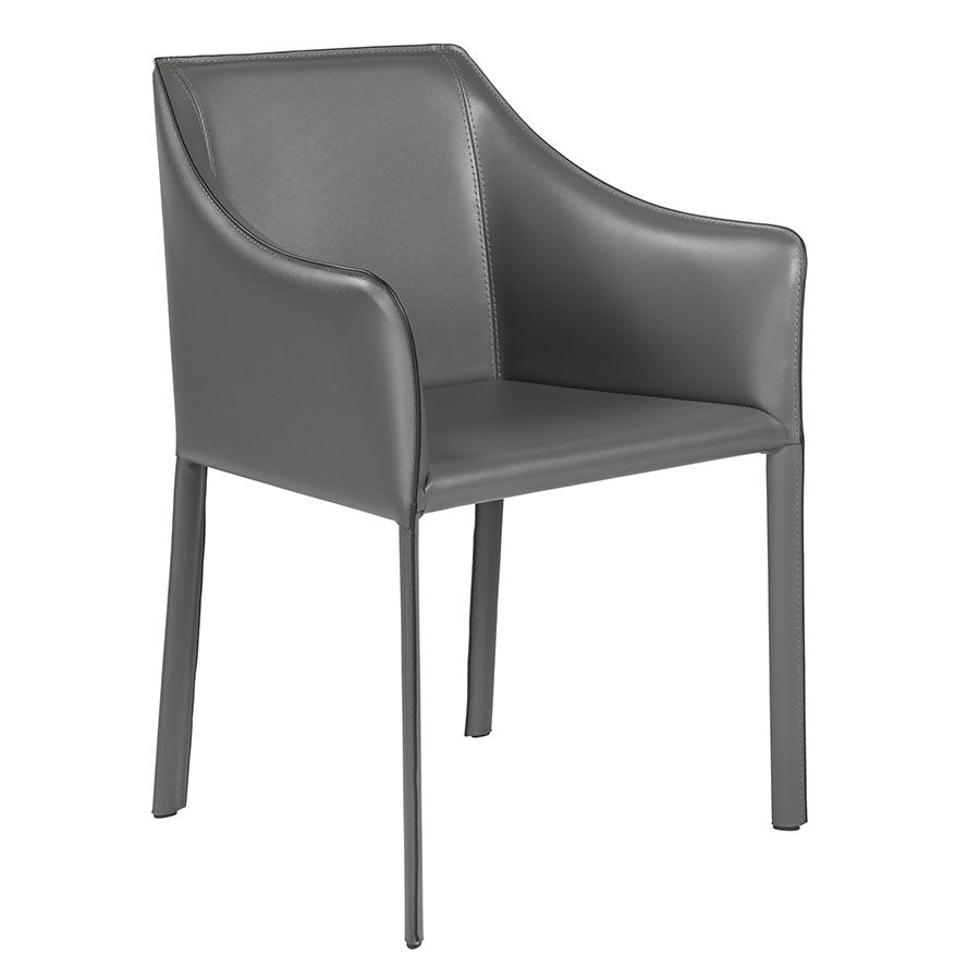 Eysen Matte Anthracite Modern Arm Chair