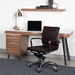 Gunar Brown Pro Low Back Desk Chair by Euro Style