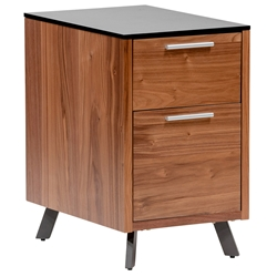 Hugo Modern Walnut + Black 2-Drawer File Cabinet