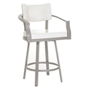 Jonas Modern Bar Stool by Amisco in Titanium