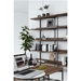 BDi Kite Modern 5-Tier Shelving Unit in Toasted Walnut + Black Steel Frame - Room Shot