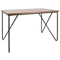Laurena Modern Walnut + Black Desk