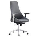 Natasha Gray Modern Executive Office Chair