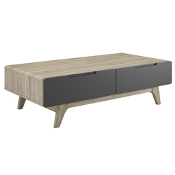 Oracle Modern Natural + Gray Storage Coffee Table