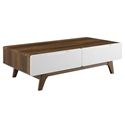Oracle Modern Walnut + White Storage Coffee Table