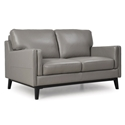 Orion Modern Gray Genuine Leather Loveseat