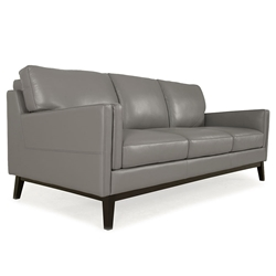Orion Modern Gray Genuine Leather Sofa