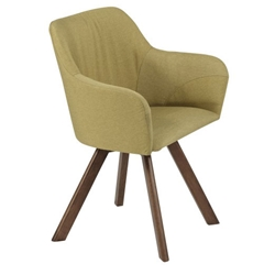 Sampson Modern Green Arm Chair