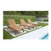 Shula Teak Contemporary Outdoor Sun Lounger