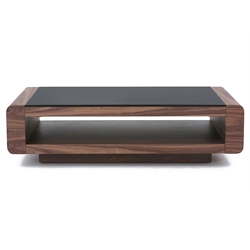 Texas Modern Walnut Coffee Table