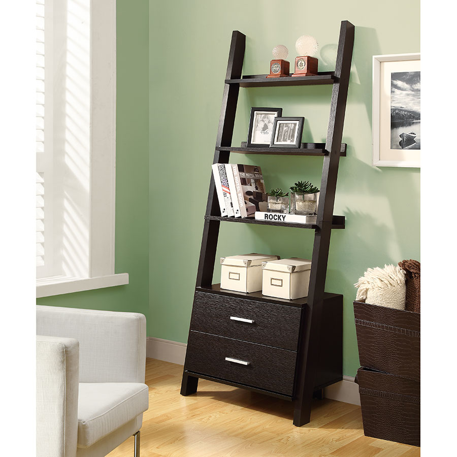 Trina Contemporary Wall-Leaning Ladder Bookcase