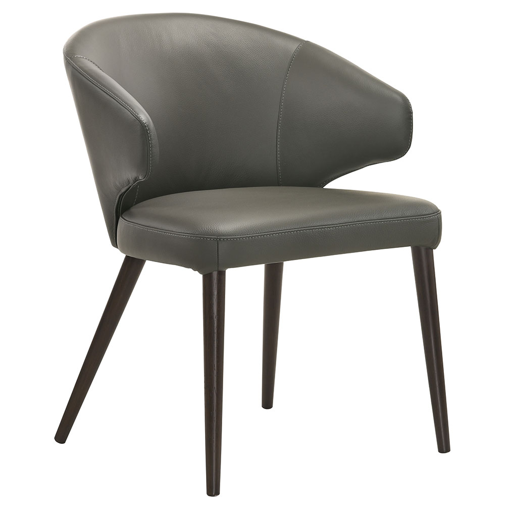 Vancouver Modern Dining Chair in Gray