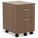 Virginia Modern 2-Drawer Walnut Mobile File Cabinet