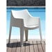 Coccolona Modern White Outdoor Chair - Poolside
