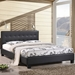 Carter Black Contemporary Platform Bed
