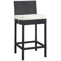 Lynx Modern Outdoor Bar Stool