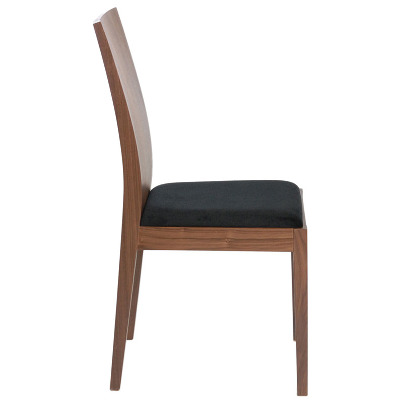 Denison Contemporary Dining Chair