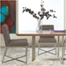 Toledo Modern Dining Chair and Table